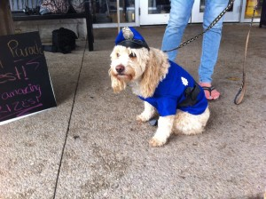 A light gold dog wearing a police vest and hat