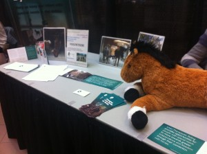The SARE Theraputic Riding Booth, with green brochures, pictures, and a toy brown horse
