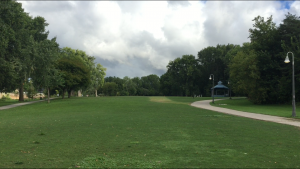 A view of inside Harris Park